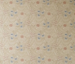 Papel Larkspur